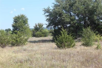 Palo Pinto Farm & Ranch For Sale: 0041 Rm 3137
