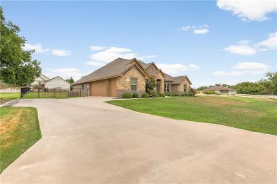 Granbury Single Family Home For Sale: 6304 Ailensor Court