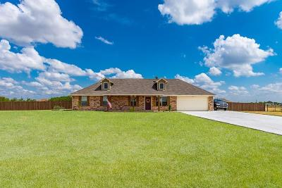 Weatherford Single Family Home For Sale: 144 Blue Ridge Drive