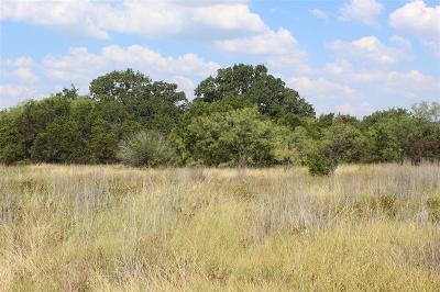 Palo Pinto Farm & Ranch For Sale: 0005 S Wilson Road
