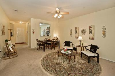Plano Townhouse For Sale: 3285 Judge Holland Lane