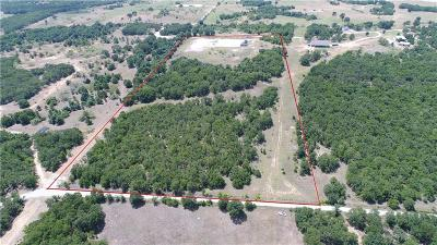 Parker County, Tarrant County, Wise County Residential Lots & Land For Sale: 349 Pr 3496