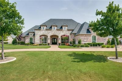 Prosper Single Family Home For Sale: 2261 Meadow View Drive