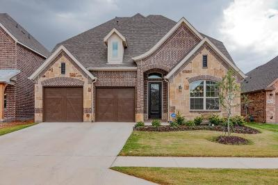 Fort Worth Single Family Home For Sale: 613 Wollford Way