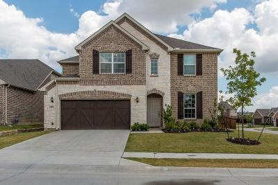 Lewisville Single Family Home For Sale: 216 Copper Canyon Drive