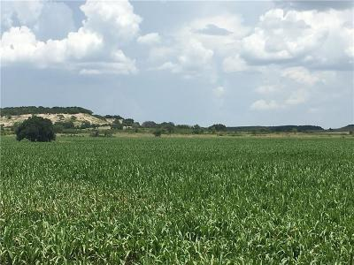 Hico Farm & Ranch For Sale: Tbd County Road 539