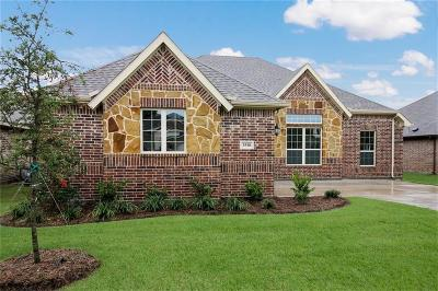 Melissa Single Family Home For Sale: 3510 Sequoia Lane