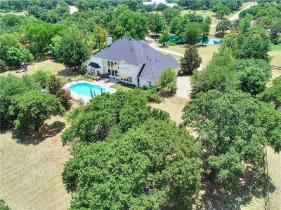 Copper Canyon Single Family Home For Sale: 735 Copper Woods Lane