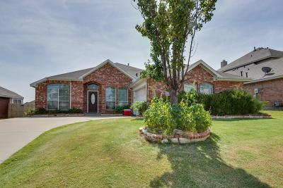 Mesquite Single Family Home For Sale: 4605 Blue Mesa Lane