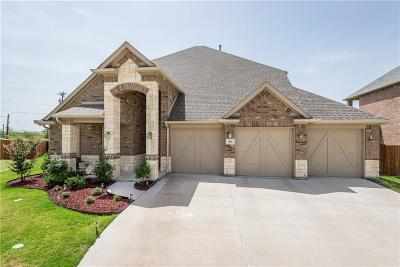 Grand Prairie Single Family Home For Sale: 301 Valentino Way