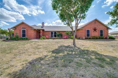 Anna Single Family Home For Sale: 825 Hurricane Creek Circle