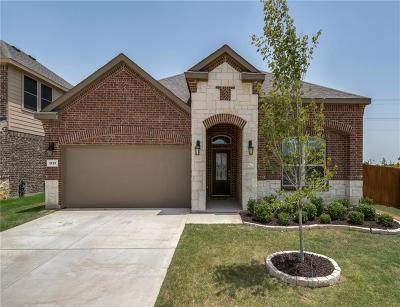 Little Elm Single Family Home For Sale: 1717 Lake Pine Drive