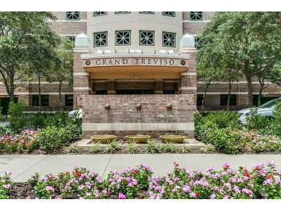 Irving Condo For Sale: 330 Las Colinas Boulevard E #1714