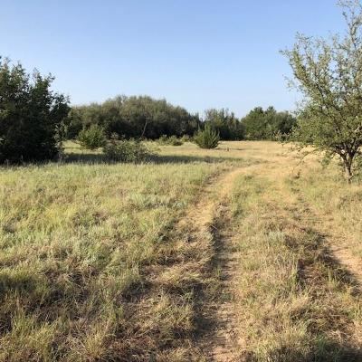 Farm & Ranch For Sale: County Road 365