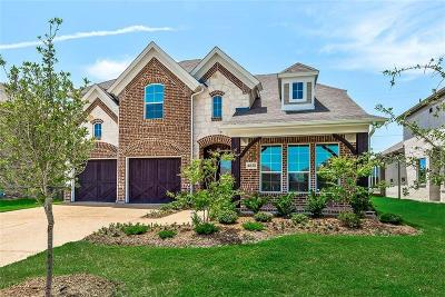 Plano Single Family Home For Sale: 4828 Rabbit Trail