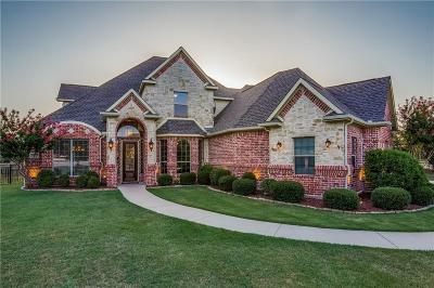 Prosper Single Family Home For Sale: 1921 Blue Forest Drive