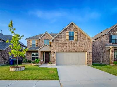 Little Elm Single Family Home For Sale: 1001 Cypress Hill Drive