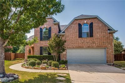 McKinney Single Family Home For Sale: 7416 Province Street