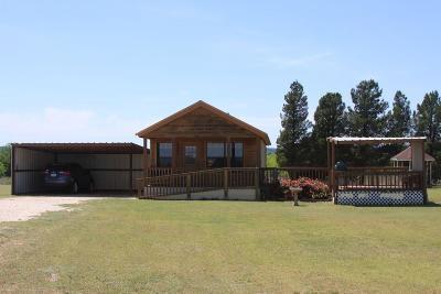 Abilene Single Family Home For Sale: 326 County Road 297