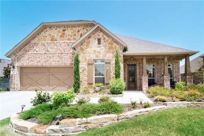 Little Elm Single Family Home For Sale: 709 Patio Street