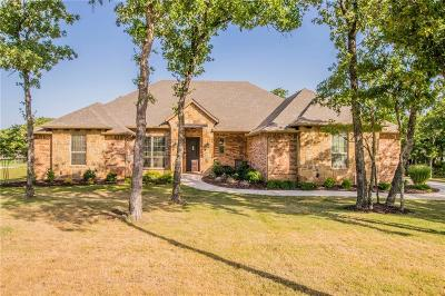 Lipan Single Family Home For Sale: 104 Birdie Drive