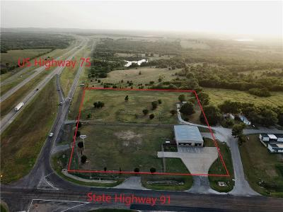 Commercial For Sale: 4423 N State Highway 91