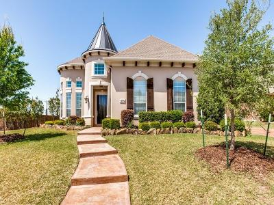 Allen Single Family Home For Sale: 1094 Great Meadow Drive