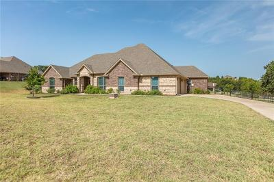 Weatherford Single Family Home For Sale: 150 Ellis Spring Drive