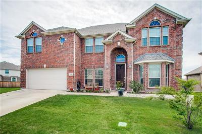 Little Elm Single Family Home For Sale: 13916 Sparrow Hill Drive
