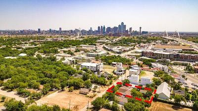 Dallas Single Family Home For Sale: 1010 Mobile Street