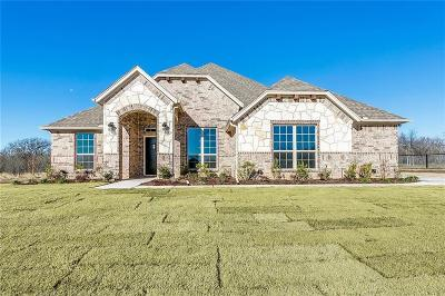 Parker County Single Family Home For Sale: 159 Hackberry Point