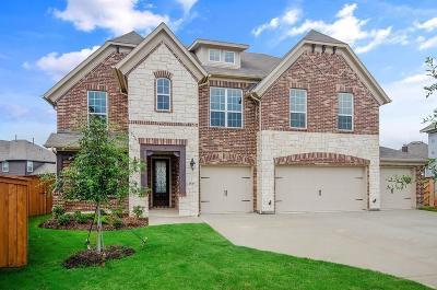 Little Elm Single Family Home For Sale: 2601 Shadow Glen