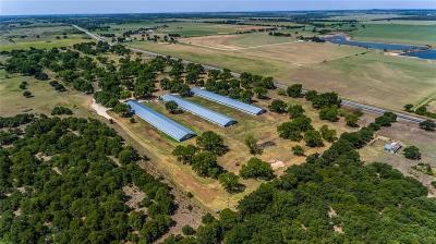 Rising Star Farm & Ranch For Sale: Tbd Hwy 183