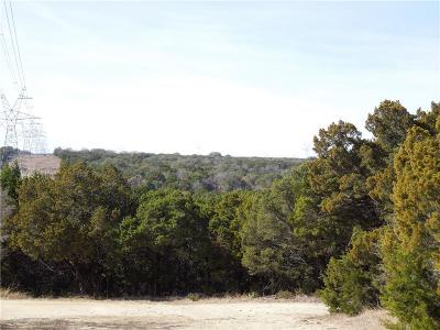 Glen Rose Single Family Home For Sale: 1303 County Road 313
