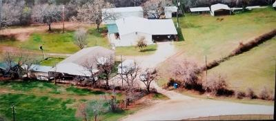 Mineral Wells Single Family Home For Sale: 1160 Lamkin Road