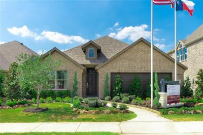 Single Family Home For Sale: 336 Camille Crossing
