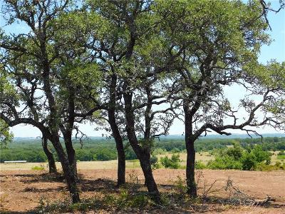 Poolville Farm & Ranch For Sale: Tbd Fm 920