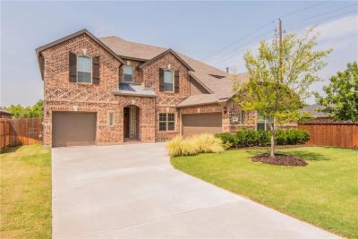 Rowlett Single Family Home For Sale: 6422 Teresa Lane
