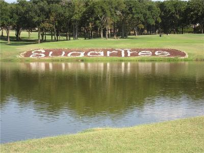 Lipan Residential Lots & Land For Sale: L210 S Sugartree Drive