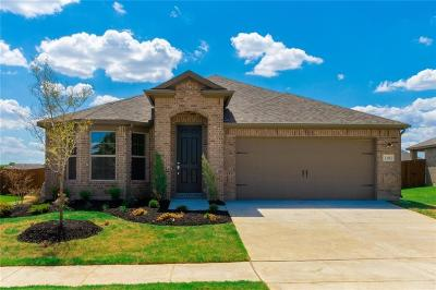 Denton Single Family Home For Sale: 3101 Dominion Street