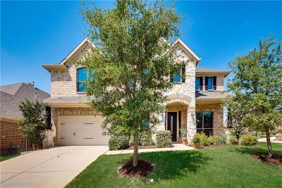 Roanoke Single Family Home For Sale: 447 Brighton Street