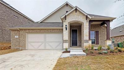 Denton Single Family Home For Sale: 6520 Meandering Creek Drive