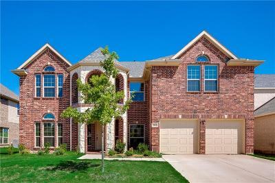 Grand Prairie Single Family Home For Sale: 2912 Arenoso