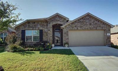 Fort Worth Single Family Home For Sale: 14416 Chino Drive