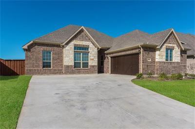 Aledo Single Family Home For Sale: 15012 Stargazer Drive
