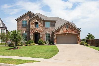 Flower Mound Single Family Home For Sale: 3504 Blue Moon Street