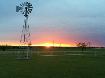 Fort Worth Farm & Ranch For Sale: 8715 Wagley Robertson Road