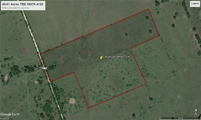 Kerens Farm & Ranch For Sale: 40.61 Tbd SE Cr 4120