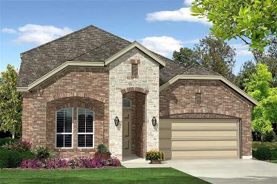 Denton Single Family Home For Sale: 3721 Cuddy