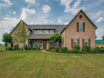 Mckinney Single Family Home For Sale: 4233 Waterstone Estates Drive